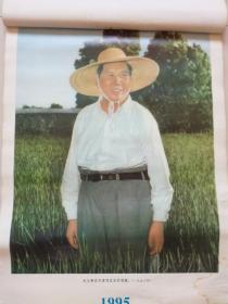 挂历散页:毛主席在天津