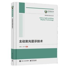 国之重器出版工程 主动发光显示技术