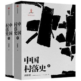 中国村落史(上下2册)