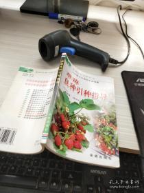 草莓良种引种指导