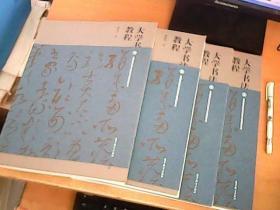 大学书法教程    邱振中  著     大16开本    品佳  【室】