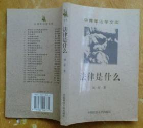 中青年法学文库:法律是什么——二十世纪英美法理学批判阅读