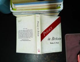 privacy in Britain 【书衣轻微破损 书衣书侧有黄斑】