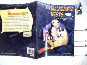 the maiasaura nests