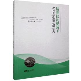 正版书籍精准扶贫视域下农村返贫治理机制研究 未知 江西人民出版