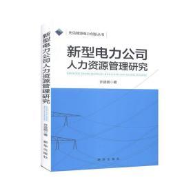 正版书籍新型电力公司  人力资源管理研究 未知 新华出版社