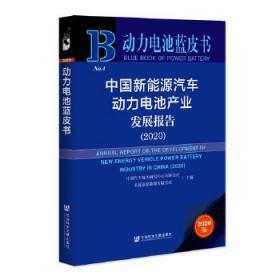 动力电池蓝皮书:中国新能源汽车动力电池产业发展报告(2020)