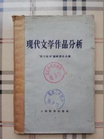 现代文学作品分析(馆藏书)