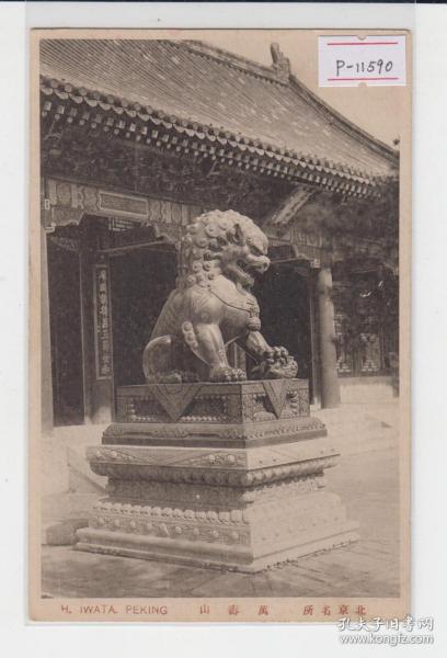 北京颐和园排云门前铜狮子民国早期老明信片