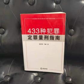 433种犯罪定罪量刑指南 牛丽