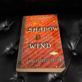 The Shadow of the Wind  风之影 外文原版