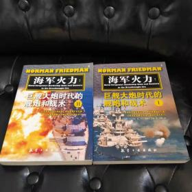 海军火力:巨舰大炮时代的舰炮和战术(上下)册