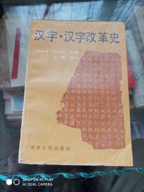 汉字,汉字改革史