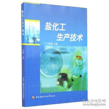 盐化工生产技术