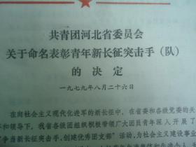 1979年关于命名表彰青年新长征突击手(队)的决定