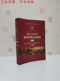 最高人民法院刑事审判实务规范(第三版)下册