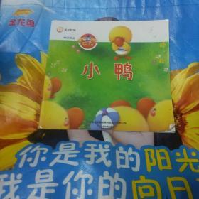 黄金教育:小鸭