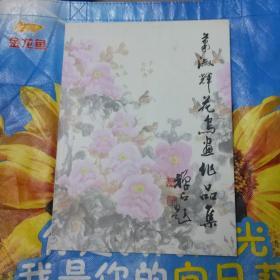 萧淑辉花鸟画作品集