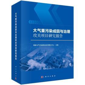 大气重污染成因与治理攻关项目研究报告