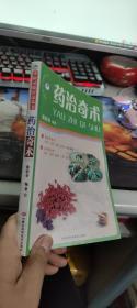中医灵验疗法丛书:药治奇术