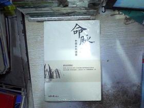 命脉(中国水利调查)