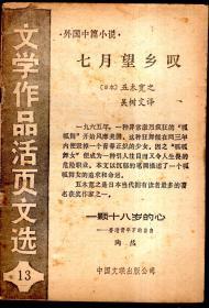 文学作品活页文选.13