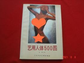 艺用人体500图 徐谦主编 天津人民美术出版社 世界人体摄影图片集