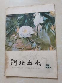 河北画刊1978年第5期