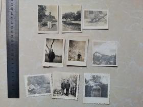 50年代老照片9张合售