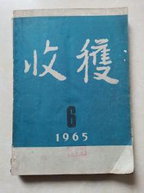 收获1965年第6期