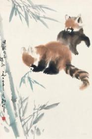 3837      王为政        《   小熊猫  》纸本印刷画页  画面尺寸19X12.7厘米