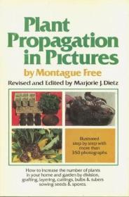 Plant Propagation In Pictures: How To Increase The Number Of Plants In Your Home And Garden By Di...