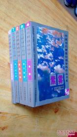 中国当代情爱伦理争鸣作品书系 5册.