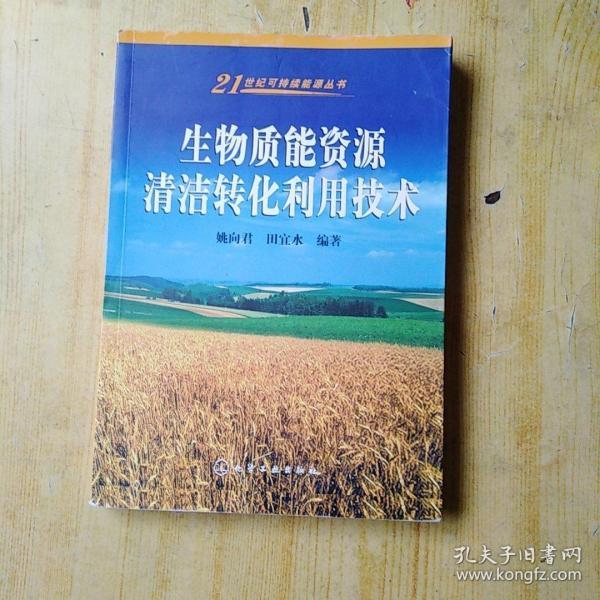 生物质能资源清洁转化利用技术/21世纪可持续能源丛书