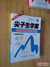 尖子生学案:化学(九年级上 新课标人 升级版)