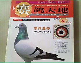 赛鸽天地2003年第6期