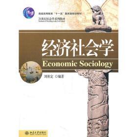 正版二手 经济社会学 刘世定 北京大学出版社 9787301162972