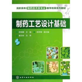 正版二手 制药工艺设计基础 厉明蓉 化学工业出版社 9787122087911