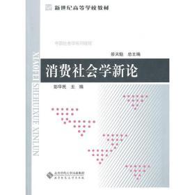 正版二手 消费社会学新论 彭华民 北京师范大学出版社 9787303122011