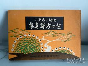 """稀见精装老版【花道名篇】《池坊和古流的生花方写真》,16开大本硬精装一册全。""""主妇之友社""""昭和十年(1935)八月,和本原刊发行。此乃日本花道名篇,硬精装内附插花及盆栽艺术照片插图多幅。版本罕见,品佳如图!"""