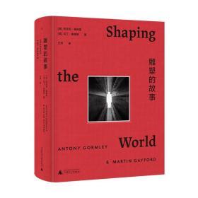 【正版】雕塑的故事 (英) 安东尼·葛姆雷(英) 马丁·盖福德 造型艺术史 石窟 造像