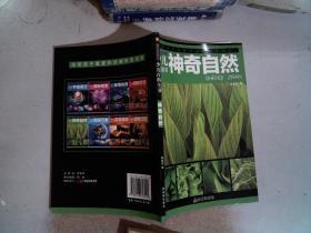 少儿百科全书彩图注音版 神奇自然