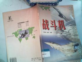 世界军事画册:战斗机