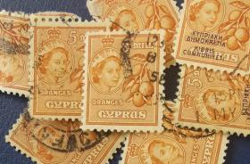 英联邦邮票G,英属塞浦路斯1955年水果柑橘,信销,1枚价
