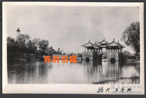 扬州瘦西湖五亭桥和白塔同框老照片
