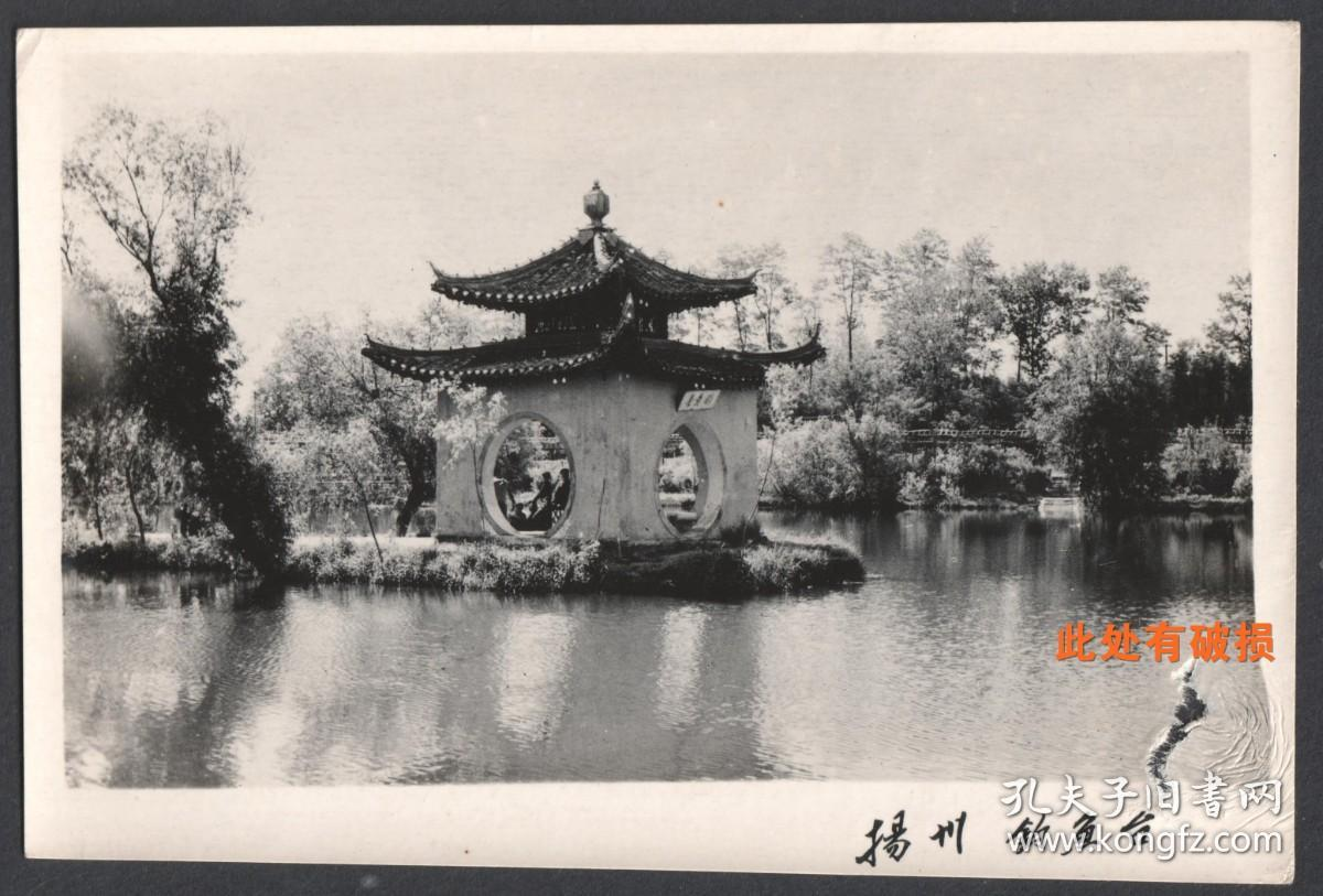 扬州瘦西湖钓鱼台老照片,有破损