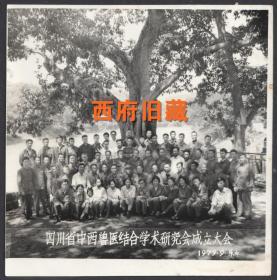 1979年,中西兽医结合学术研究会成立大会合影老照片,四川乐山留影