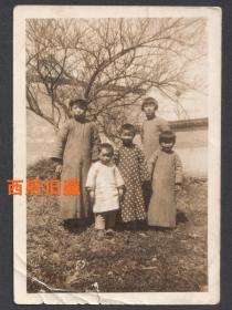 民国老照片,大户人家庭院树下,孩子们的合影老照片
