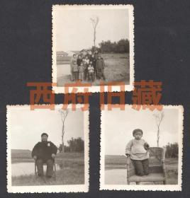 文革时期,中国式家庭老照片3张,佩戴毛主席的定海神针,站到椅子上未来希望,一棵孤零零树下的一个紧密团结的大家庭