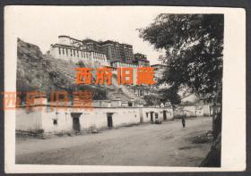 1955年,西藏布达拉宫广场老照片,少见的视角